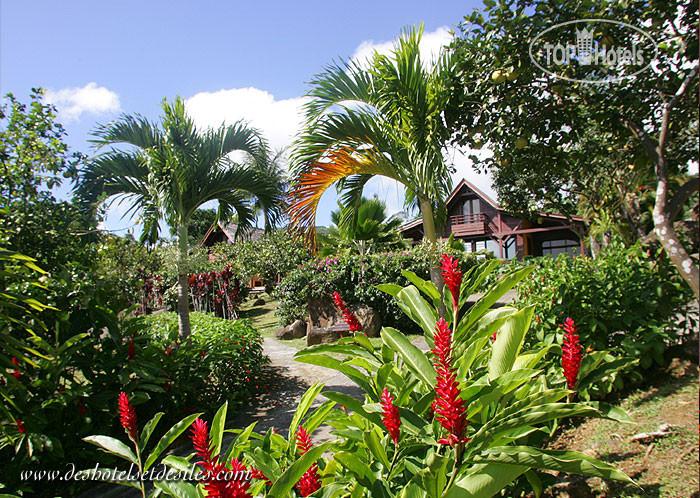 Le jardin malanga 3 guadeloupe basse terre island trois for Jardin 3 rivieres
