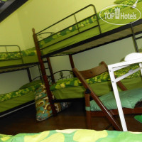 Фото отеля Apple Hostel No Category