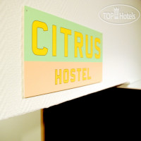 Фото отеля Open Hostel Цитрус No Category