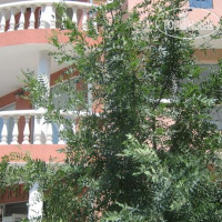 Фото отеля Orchidea Guest House 2*