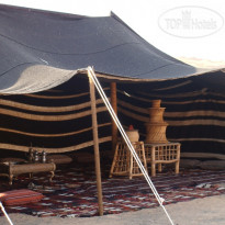 Arabian Oryx Camp - Фото отеля