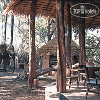 Фото отеля Sandibe Safari Lodge 5*