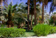 ����������� ����� Golden 5 Paradise Resort