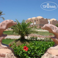 Beach Albatros Resort Marsa Alam 4*