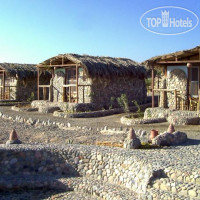 Фото отеля Ecolodge Bedouin Valley 3*