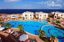 Фото отеля Shores Aloha Resort 4*