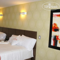 Фото отеля Zi One Luxury Hotel 3*