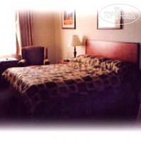 Фото отеля Rosslyn Inn and Suites 5*