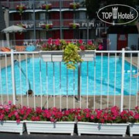 Фото отеля Kings Inn Near The Falls 3*