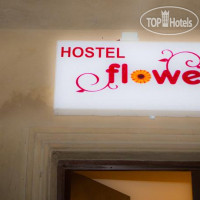 Фото отеля Flowers Hostel No Category