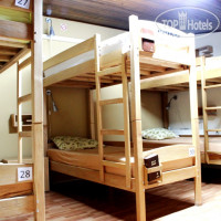 Фото отеля Envoy Hostel No Category