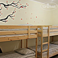 Фото отеля Athletic Hostel (Атлетик Хостел) No Category