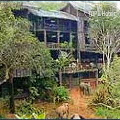 Shimba Rainforest Lodge 4*