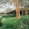 ���� ����� Sarova Lion Hill Game Lodge 4*
