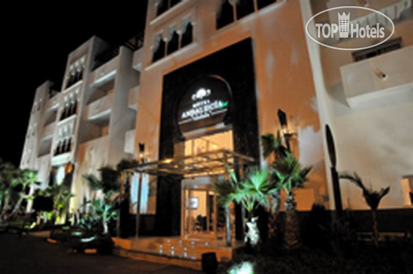 ���� Andalucia Golf Tanger 5* / ������� / ������