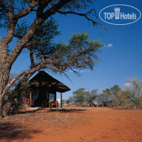 Фото отеля Camelthorn Lodge 4*