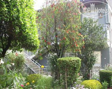 ���� Z Guest House 2* / ������� / ����� �����