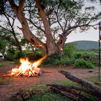 Фото отеля Serengeti Sopa Lodge 4*