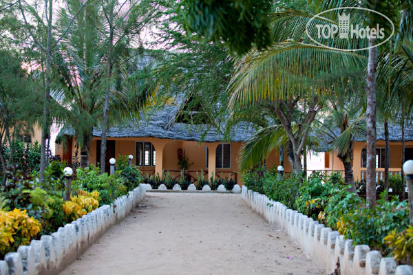 ���� Amaan Bungalows Nungwi 3* / �������� / �������� �.