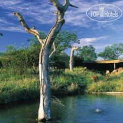 Sabi Sabi Earth Lodge 5*