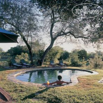 Фото отеля Djuma Bush Lodge 4*
