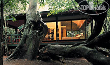 Hotel photos Phinda Forest Lodge 5*