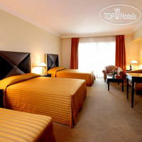 Фото отеля Royal Orchid Hotel 3*