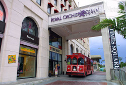 Royal Orchid Hotel 3*