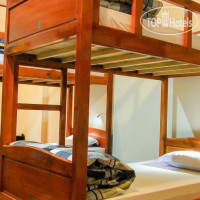 Фото отеля Wolfpack Hostel Dalat No Category