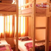Фото отеля Tiny Tigers Hostel No Category