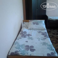 Фото отеля Tranzit Hostel No Category