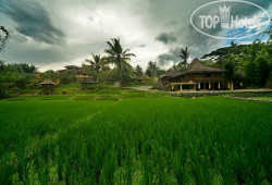Paddy City Resort Malang Hotel 3*