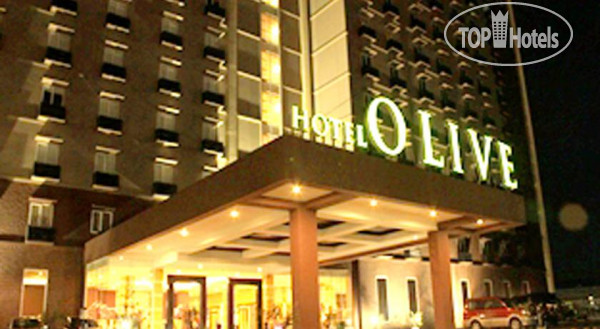 Olive Hotel 3*