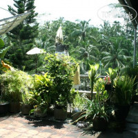 Фото отеля Pesona Terrace Ubud No Category