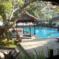 Фото отеля Bali Lovina Beach Cottage 3* Бассейн