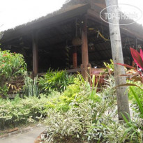 Фото отеля Bali Lovina Beach Cottage 3* Отель