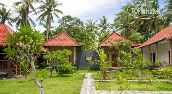 Nyoman Guesthouse No Category
