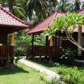 ���� ����� Nyoman Guesthouse No Category