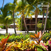 Фото отеля Palm Island Resort 4*