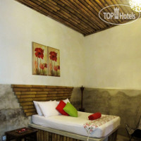 Фото отеля Tropical Guest House 1*
