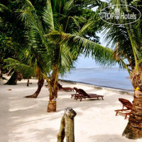 Фото отеля Dolphin Bay Resort & Peleliu Divers 3*