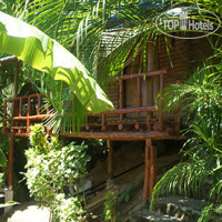 Фото отеля Tropical Garden Bungalows No Category