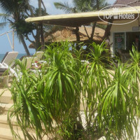 Фото отеля Lanta New Coconut Bungalow 2*