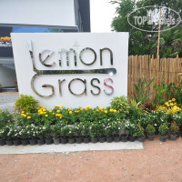 Фото отеля Lemon Grass Retreat 3*