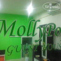 Фото отеля Molly Pop Guest House 1*