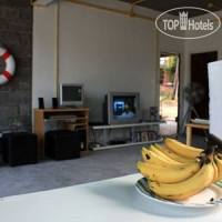 Фото отеля Monkey Hostel Koh Samui 2*