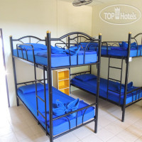 Фото отеля Asia Blue Bunk Up 2*
