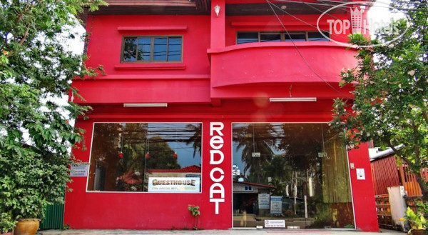 Red Cat Guesthouse 2*