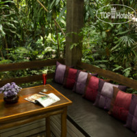 Фото отеля Rain Forest Resort 3*