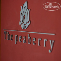 Фото отеля The Peaberry Chiangmai 3*